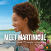 Destination Martinique - Le Guide